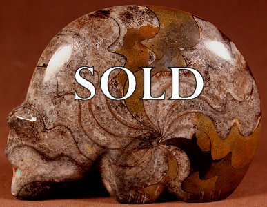 Lena Boone | Fossil Ammonite Marble  | Giant Medicine Bear  | Price: $195. +  $10.00  domestic shipping | Texas sales tax applies to Texas Residents! | CLICK  IMAGE for more views & information. | Authentic Zuni fetishes direct from Zuni Pueblo to YOU from Zunispirits.com!